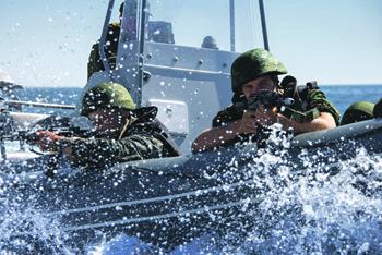 """морская пехота. черные береты, универсальные десантные корабли, мистраль, иван грен"""", бдк"""