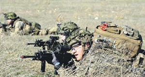 Датским солдатам в бою без ножниц, конечно, никак не обойтись. Фото с фотострима ОК ВС НАТО в Flickr